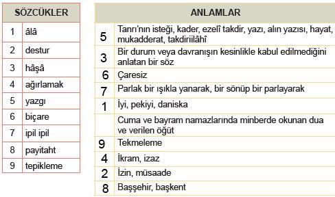 Meb türkçe 208.sayfa sınıf 8