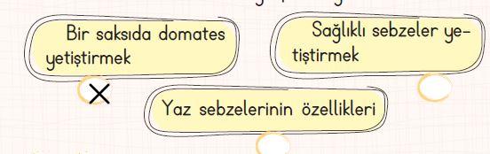 204.sayfa