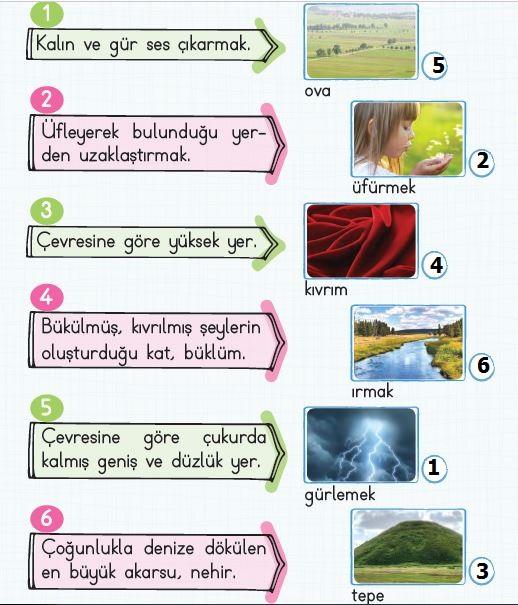2. Sınıf Türkçe Ders Kitabı 41. Sayfa Cevabı
