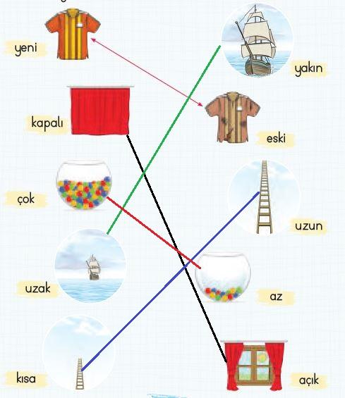 2. Sınıf Türkçe Ders Kitabı 25. Sayfa Cevabı
