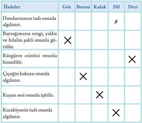 3. Sınıf Fen Bilimleri Tuna Yayınları Ders Kitabı Sayfa 50 Cevapları