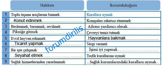 6. Sınıf MEB Yayınları Sosyal Bilgiler 41. Sayfa Cevapları MEB