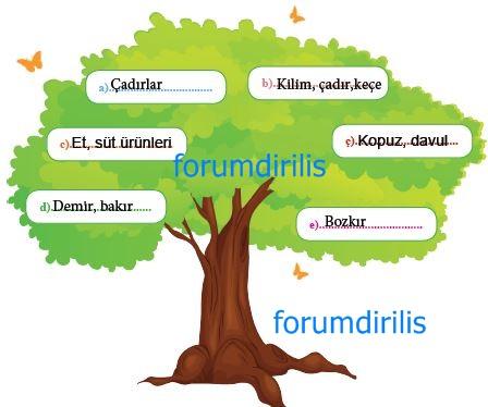 6. Sınıf MEB Yayınları Sosyal Bilgiler 53. Sayfa Cevapları