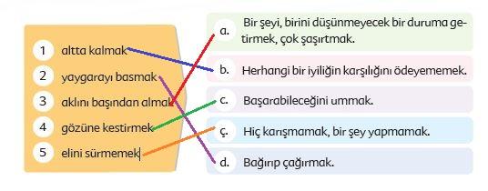 6. Sınıf Türkçe Ders Kitabı Ekoyay Yayınları 39. Sayfa Cevapları