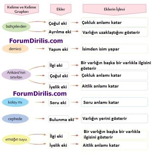 6. Sınıf Türkçe Ders Kitabı Ekoyay Yayınları 62. Sayfa Cevapları