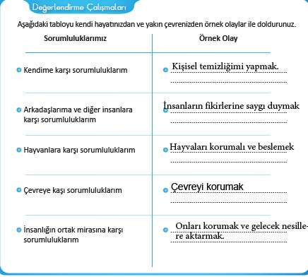 29.sayfa cevapları