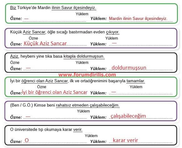 8. Sınıf Türkçe Ders Kitabı MEB Yayınları 95. Sayfa Cevapları