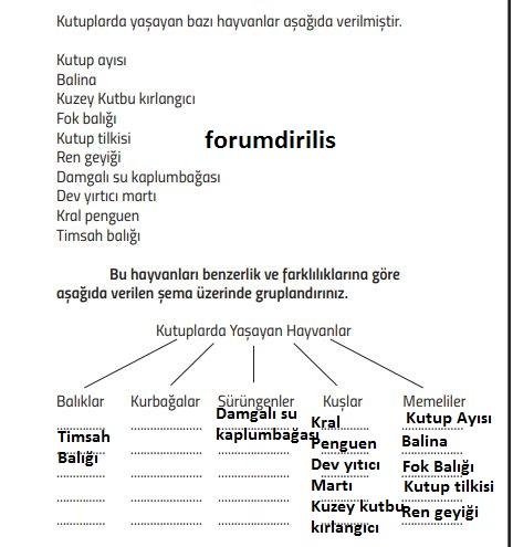 71.sayfa