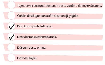 6. Sınıf Türkçe Ders Kitabı Ekoyay Yayınları 135. Sayfa Cevapları