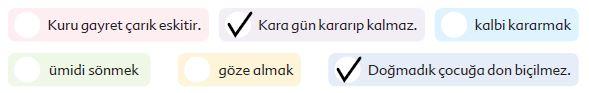 6. Sınıf Türkçe Ders Kitabı Ekoyay Yayınları 120. Sayfa Cevapları