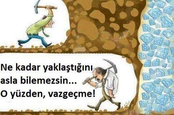 6. Sınıf Türkçe Ders Kitabı Ekoyay Yayınları 116. Sayfa Cevapları