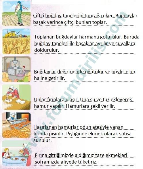 3. Sınıf Türkçe Ders Kitabı Sonuç Yayınları 132. Sayfa Cevapları