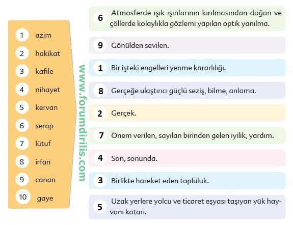 6. Sınıf Türkçe Ders Kitabı 116-117-118-119-120-121-122. Sayfa Cevapları  Ekoyay Yayıncılık