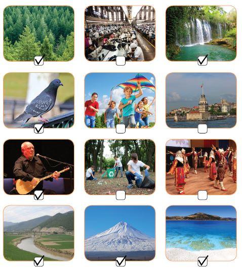 7. Sınıf Türkçe Ders Kitabı Özgün Yayınları 118. Sayfa Cevapları