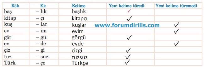 5. Sınıf Türkçe Ders Kitabı Anıttepe Yayınları 91. Sayfa Cevapları