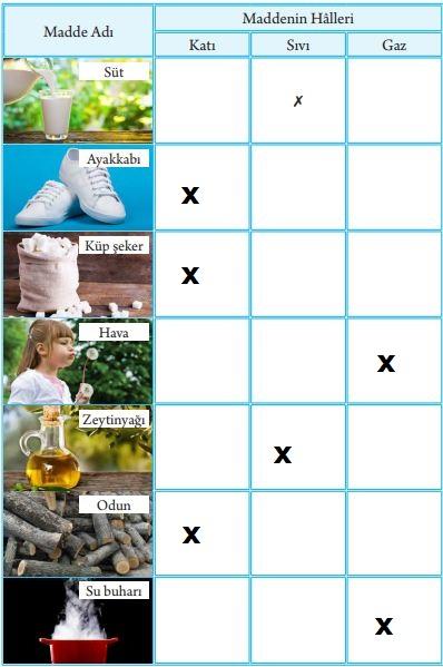 3. Sınıf Fen Bilimleri Tuna Yayınları Ders Kitabı Sayfa 100 Cevapları