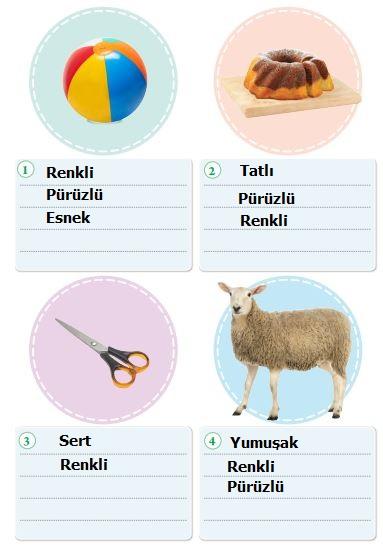 3. Sınıf Fen Bilimleri Tuna Yayınları Ders Kitabı Sayfa 93 Cevapları