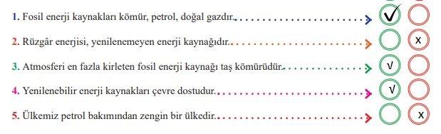 6. Sınıf MEB Yayınları Sosyal Bilgiler 174. Sayfa Cevapları
