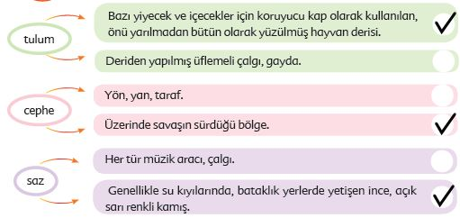 6. Sınıf Türkçe Ders Kitabı Ekoyay Yayınları 171. Sayfa Cevapları