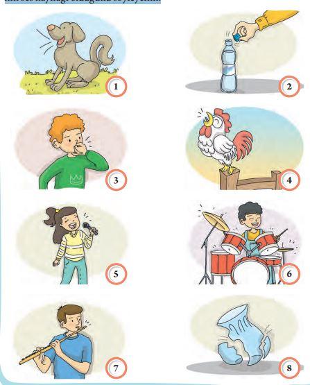 3. Sınıf Fen Bilimleri Tuna Yayınları Ders Kitabı Sayfa 121 Cevapları
