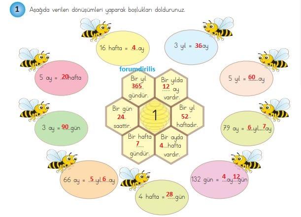 4. Sınıf Matematik Ders Kitabı 161. Sayfa Cevapları