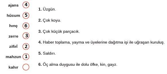 8. Sınıf Türkçe Ders Kitabı MEB Yayınları 264. Sayfa