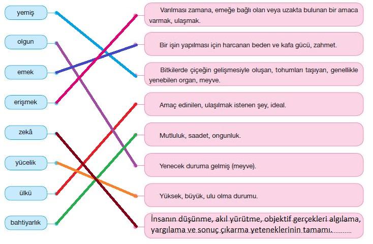 7. Sınıf Türkçe Ders Kitabı Özgün Yayınları 201. Sayfa Cevapları