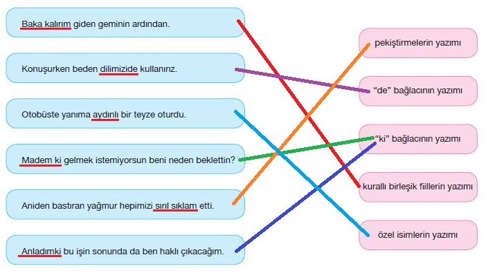 7. Sınıf Türkçe Ders Kitabı Özgün Yayınları 226. Sayfa Cevapları