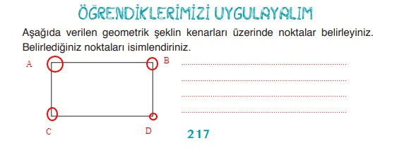 3.sınıf matematik 217.sayfa cevapları ada yayıncılık
