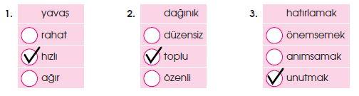 4. Sınıf Türkçe 35. Sayfa Cevapları